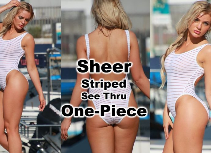 Sheer See Through One Piece Swimsuit